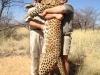 bobby-leopard